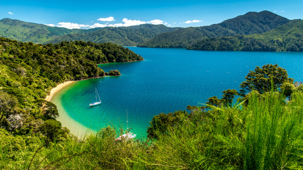 Zamach Nowa Zelandia Film Facebook: Blog Podróżniczy: Nowa Zelandia W 4 Tygodnie