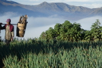 amanda: Magiczny wschód słońca nad Bromo